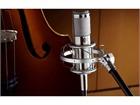 Shure KSM 353/ED Premium Bändchenmikrofon
