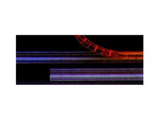 Kunststoffkanal für RUBBERLIGHT 180cm