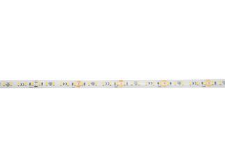 EUROLITE LED IP Strip 600 5m 2835 4000K 24V