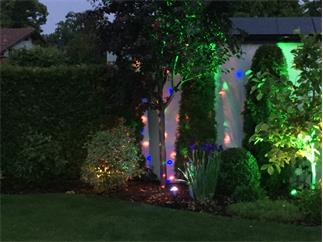 EUROLITE LED IP BCO-1 Strahleneffekt RGB, Gartenflower