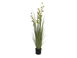 Europalms Pompongras, 122cm - Kunstpflanze