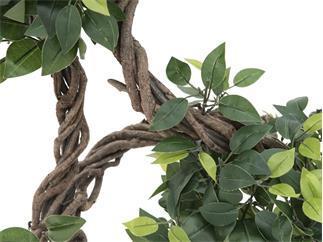 Europalms Ficus Multi Spiralstamm, 160cm - Kunstpflanze