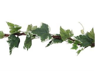 Europalms Efeugirlande, grün-weiß, 350cm, Kunstpflanze, 185 Blätter