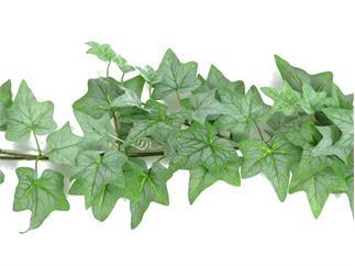 Efeugirlande dicht, grün, 180cm, Kunstpflanze