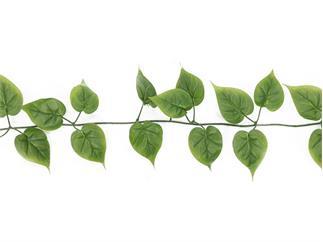 Europalms Philodendrongirlande, 180cm, Kunstpflanze, 48 Blätter