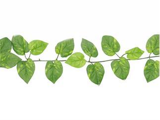Europalms Pothosgirlande, 180cm, Kunstpflanze, 48 Blätter