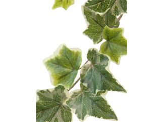 Europalms Holland-Efeugirlande geprägt 81cm - Kunstpflanze