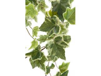 Europalms Holland-Efeuranke geprägt 86cm - Kunstpflanze
