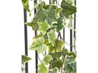 Europalms Holland-Efeuranke geprägt 180cm - Kunstpflanze