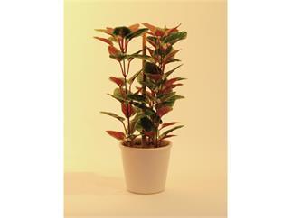 Europalms Coleos, Buntnessel im Keramiktopf, 30cm, Kunstpflanze, 72 Blätter