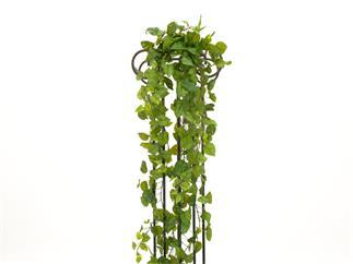 EUROPALMS Pothosbuschranke Premium, künstlich, 170cm