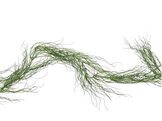 Europalms Grasgirlande, grün, 180cm, Kunstpflanze