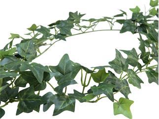 EUROPALMS Efeugirlande Classic, 180cm, Kunstpflanze