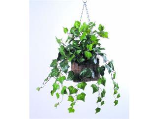 Europalms Efeubusch dicht, 60cm, Kunstpflanze, 180 Blätter