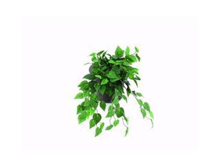 Europalms Philobusch grün dicht, 60cm, Kunstpflanze, 180 Blätter