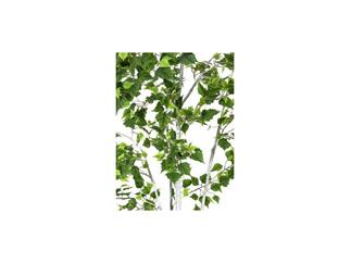 Europalms Birkenbaum im Gärtnertopf, 210cm, Kunstbaum, 1102 Blätter