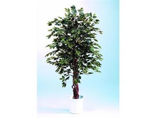 europalms Ficus-Benjamini Multi-Stamm, 150cm, Kunstpflanze mit Betonfuß