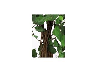 Europalms Ficus-Benjamini Multi-Stamm, 180cm, Kunstpflanze