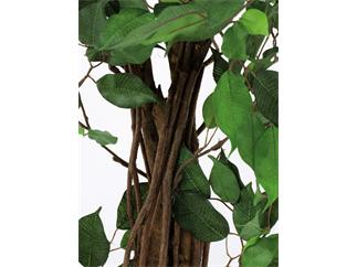 Europalms Ficus-Benjamini Multi-Stamm, 210cm - Kunstpflanze