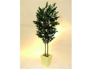 Olivenbaum 2-stämmig 250cm mit Früchten, Kunstpflanze