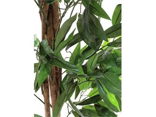 Europalms Dschungelbaum Mango 180cm, Kunstpflanze