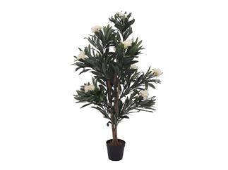 Europalms Oleanderbaum, weiß, 120 cm