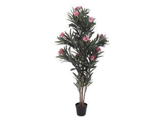 Europalms Oleanderbaum, rosa, 150 cm