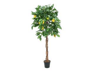 Europalms Zitronenbaum, 150cm - Kunstpflanze