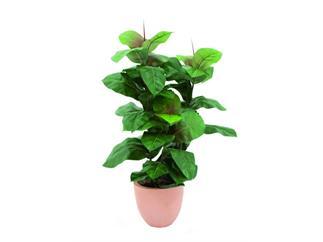 europalms Gummibaum, 100cm, Kunstpflanze