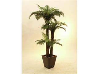 EUROPALMS Farnpalme, 160cm, Kunstpflanze