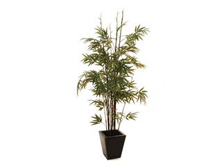 Europalms Bambus Dunkelstamm, 152cm - Kunstpflanze