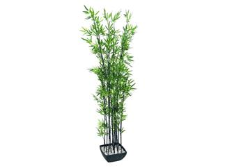 Zierbambus in Dekoschale, 180cm, Kunstpflanze
