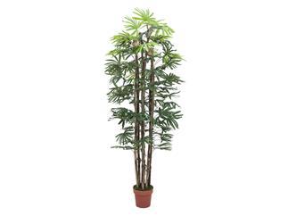 Europalms Rhaphispalme, 180cm - Kunstpflanze