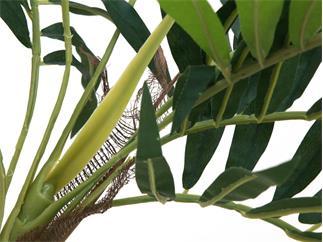 EUROPALMS Parlour Palme, Kunstpflanze, 150cm
