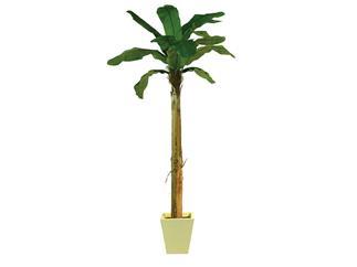 Europalms Bananenbaum, 270cm - Kunstpflanze