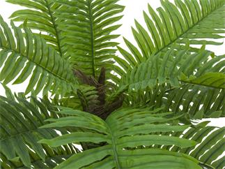 EUROPALMS Cycas Palme, Kunstpflanze, 70cm