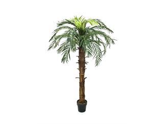 Europalms Kokos-Königspalme, 180cm, Kunstpflanze