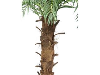 Europalms Kokos-Königspalme, 200cm, Kunstpflanze