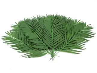 Europalms Kokos-Palmwedel 110cm 12 Stück, Kunstpflanze