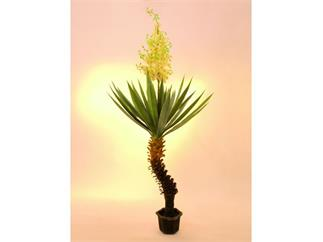 Yuccapalme 40Blatt m.Blütenstaude im Topf 222cm - Gigantisch !, Kunstpflanze