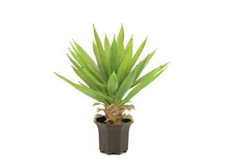 Europalms Yuccabusch, hellgrün, 50cm - Kunstpflanze