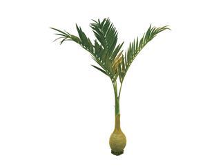 Europalms Phönixpalme mit Knollenstamm, 240cm - Kunstpflanze