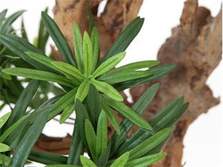 Europalms Bonsai-Palmenbaum, 180cm - Kunstpflanze