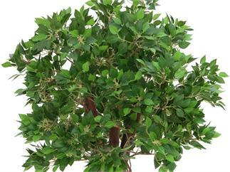Ficuskugelbaum im Zementtopf 100cm, Kunstpflanze