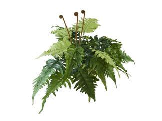 Lederfarn 23 Blätter 60cm, Kunstpflanze