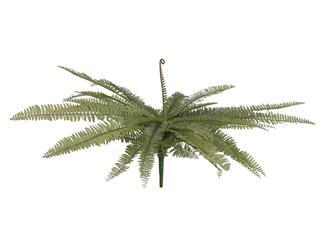 Europalms Königsfarn, grün, 70cm - Kunstpflanze