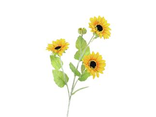 Europalms Sonnenblumenzweig, 70cm - Kunstpflanze