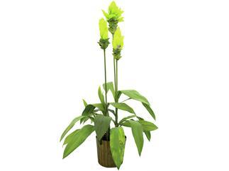 Europalms Ingwerlilie, 95cm - Kunstpflanze