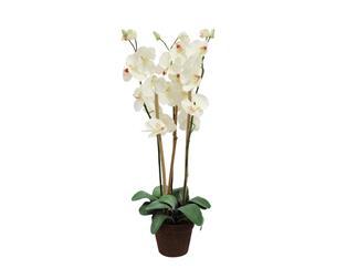 Europalms Orchidee, weiß, 80cm - Kunstpflanze