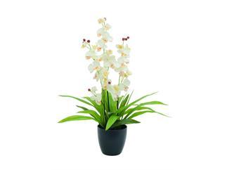 Orchidee, weiß, 80cm, im Topf, Kunstpflanze